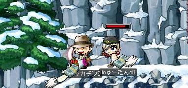 Maple1647a.jpg
