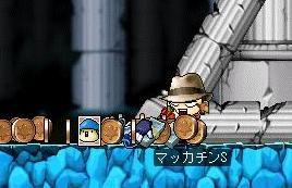 Maple1700a.jpg