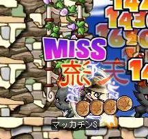 Maple1780a.jpg