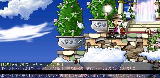 Maple2025a.jpg
