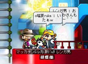 Maple2078a.jpg