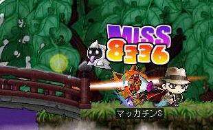 Maple2132a.jpg