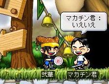 Maple2141a.jpg