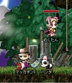 Maple2146a.jpg