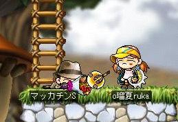 Maple2151a.jpg