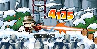 Maple2181a.jpg