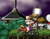 Maple2198a.jpg