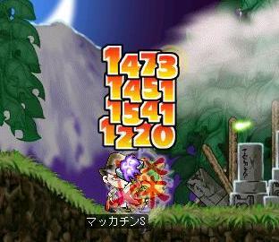 Maple2199a.jpg