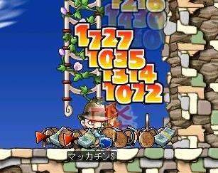 Maple2212a.jpg
