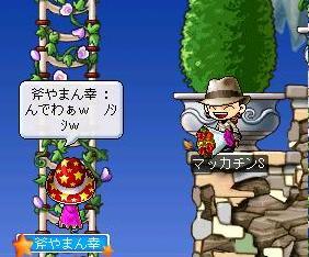 Maple2291a.jpg