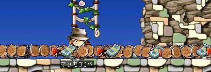Maple2292a.jpg
