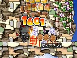 Maple2293a.jpg