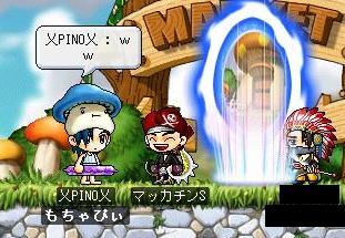 Maple2338a.jpg