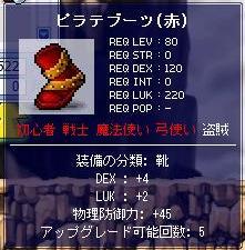 Maple2377a.jpg