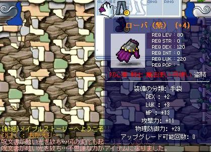 Maple2868a.jpg