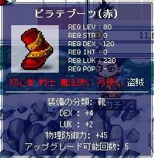 Maple2980a.jpg