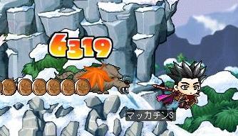 Maple3105a.jpg