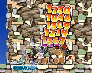 Maple3264a.jpg