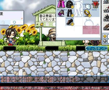 Maple3313a.jpg