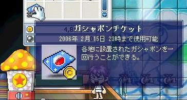 Maple3383a.jpg