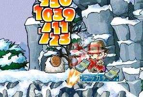 Maple3672a.jpg