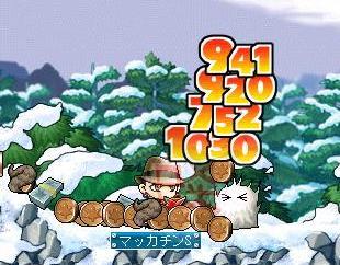 Maple3676a.jpg