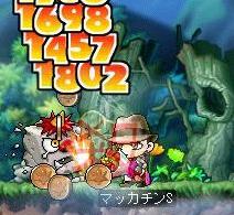 Maple3701a.jpg