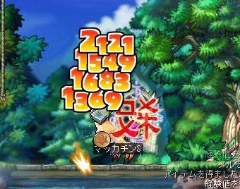 Maple3712a.jpg