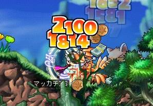 Maple3728a.jpg
