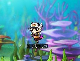Maple3729a.jpg