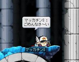 Maple3745a.jpg