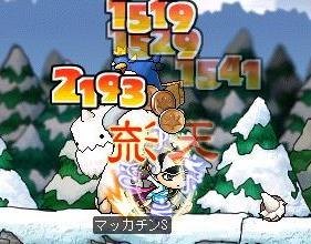 Maple3749a.jpg