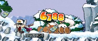 Maple3762a.jpg