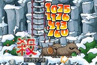 Maple3767a.jpg