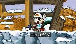 Maple3774a.jpg