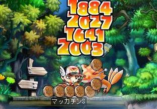 Maple3787a.jpg
