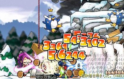 Maple3798a.jpg