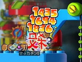 Maple3814a.jpg