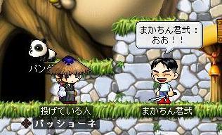 Maple3821a.jpg