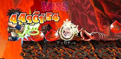 Maple3886a.jpg