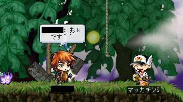 Maple3889a.jpg