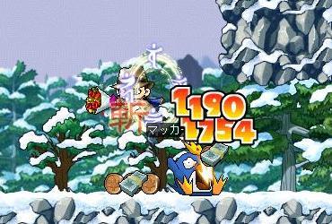 Maple4086a.jpg