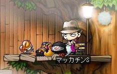 Maple4115a.jpg