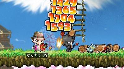 Maple4184a.jpg