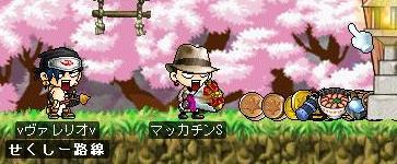 Maple4186a.jpg