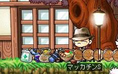 Maple4372a.jpg
