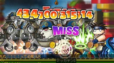 Maple4381a.jpg