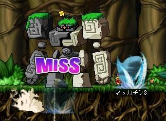 Maple4393a.jpg