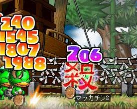 Maple4511a.jpg
