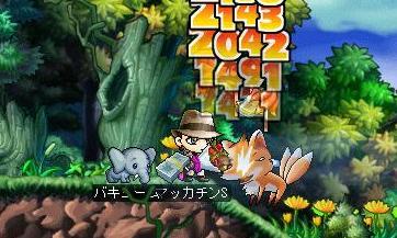 Maple4536a.jpg